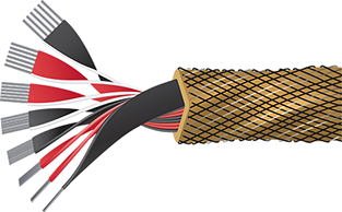 Wireworld Gold Eclipse 8 Speaker Cable Cutaway